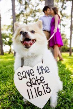 """Fotos românticas """"Save the Date"""" para seu casamento"""
