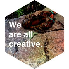 Crustasceous Creativity  #madewithstudio