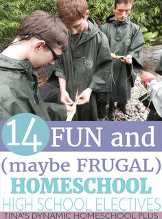 14 Fun (and maybe Frugal) Homeschool High School Electives @ Tina's Dynamic Homeschool Plus