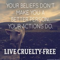Buy cruelty free products.