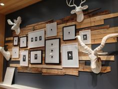 basement wall ideas | west elm - plank/photo wall | Finished Basement Ideas