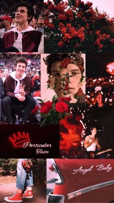 Pics Of Shawn Mendes, Shawn Mendes Cute, Shawn Mendes Memes, Shawn Mendes Imagines, Shawn Mendes Lockscreen, Shawn Mendes Wallpaper, Aesthetic Collage, Red Aesthetic, Aesthetic Iphone Wallpaper