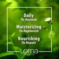 Wondering which Loma shampoo is right for your hair? Let us help! 🌼Daily Shampoo is ideal for fine to normal hair, and restores with tangerine, orange and grapefruit. 🌸Moisturizing Shampoo is perfect for normal to dry hair, and replenishes moisture with tangerine, orange and mango. 🌺Nourishing Shampoo is optimal for especially dry, thirsty hair, and repairs with cranberry and pear.