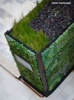 Urban Landscape created this design using a tray system that allows plants to grow on solid structures, such as this mailbox — a creative way to incorporate a garden into everyday life.