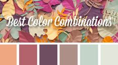 50 Best Color Combinations for Graphic Design Projects by Designseeds