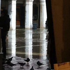 Acqua alta San Giacometto Venezia