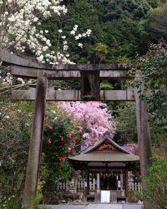 KYOTO MOYOU(京都もよう Tumblr版)Ootoyo Jinja