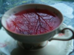There was more than just tea in that cup.....- Previous pinner
