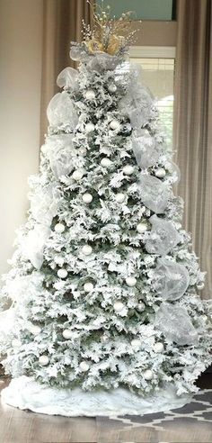 Christmas Tree ● Frosted White was our tree one year when I was in high school, red the next year