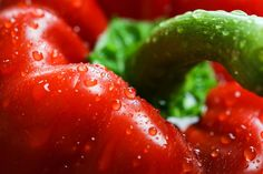 Red Paprika with Drops Close Up Free Image Download
