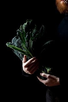 Green leafy vegetables are very nutrient-dense and incredibly healthy. They are a vital source of antioxidants that are very beneficial to providing weight loss help. #healing  #adaptogens  #superfoods  #foodasmedicine  #plantbased  eating#fresh  #superfood  #eattherainbow  #nourish  #healthy