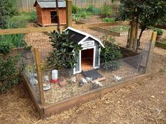 cute chicken coop idea.. this idea makes me want to go right out and buy some chickens to have as pets! Love this!