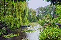 Fotografía El jardín de Monet II por Maria Jose Lopez Fernandez en 500px
