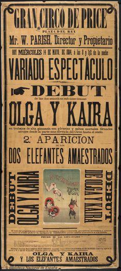 Olga y Kaira. Circo Price — Dibujos, grabados y fotografías — 1884