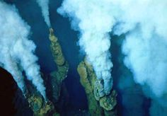 Over 70% of the earth's surface is covered by water and this huge area contains some of the most amazing wonders on the planet. Shockingly, huge portions of the world's oceans have yet to be disco