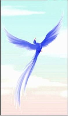 синяя птица счастья картинки