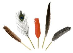 quill pens $28