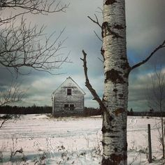 LadyLimoges — blacknblunicorn: Abandoned house down the road Old Buildings, Abandoned Buildings, Abandoned Places, Snow Scenes, Winter Scenes, Old Farm Houses, Old Barns, Ghost Towns, Great Photos