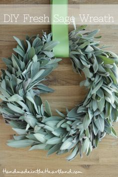 DIY Fresh Sage Wreath, have to much sage in your garden? Make a wreath with it and then use it as it dries all winter long. A great craft to make for your kitchen.