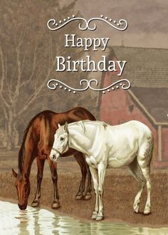 Happy Birthday Horse, Happy Birthday Emoji, Happy Birthday Niece, Happy Birthday Wishes Photos, Happy Birthday Vintage, Birthday Wishes Funny, Happy Wishes, Happy Birthday Quotes, Happy Birthday Greetings