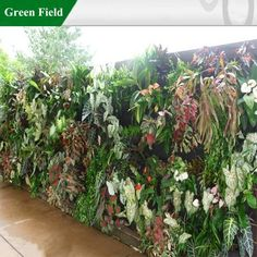 Green Wall System, Green Wall Module