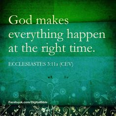 """Ecclesiastes 3:11A - """"He has made everything beautiful in its time."""""""