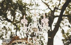 Winterbourne Inn, Jacksonville, FL  St. John's Illumination/St. Augustine Lighting - outdoor chandelier at wedding.