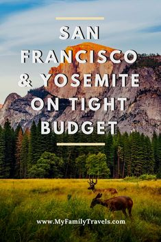 San Francisco and Yosemite make for a great family vacation, but isn't exactly known for being cheap. Here's how to do it on a budget. Family Vacation Packages, Family Vacation Destinations, Travel Destinations, Vacation Travel, Family Vacations, Budget Travel, Travel Tips, Vacation Ideas, Travel Ideas