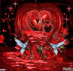 I Love You Means, Still Love You, Tinkerbell Wallpaper, Hugs And Kisses Quotes, Beautiful Love, Beautiful Hearts, Fire Dancer, Lion Pictures, Wonderful Flowers