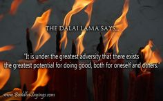 ...the greatest potential for doing good....www.buddhasayings.com