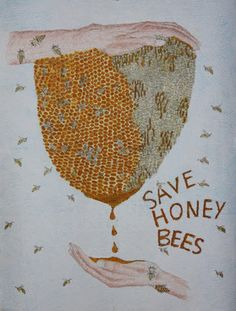 save honey bees..PLEASE help stop companies like Monsanto from polluting our food supply.  It's killing the honey bees.