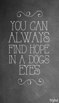 You can always find hope in a dogs eyes.