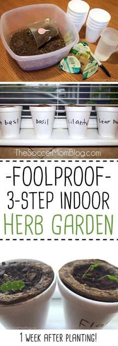 A foolproof tutorial for an indoor herb garden…perfect if you don't have a green thumb or for gardening with kids! Simple and mess-free! Gardening with Kids: Easy Indoor Herb Garden Indoor Vegetable Gardening, Organic Gardening Tips, Hydroponic Gardening, Container Gardening, Herb Gardening, Texas Gardening, Gardening Vegetables, Gardening Hacks, Greenhouse Gardening