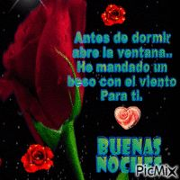 noche Roses