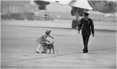 """January 8, 1963: When President Kennedy and his family returned here from their holiday vacation in Florida, Caroline's Welsh terrier, """"Charlie,"""" broke away from her. Caroline gave chase and finally caught up with him. With a crew member of the helicopter that took the First Family back to the White House ready to lend a hand, Caroline slipped a little during the chase."""