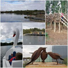 Life in the Mum's Lane: Rushden Lakes Shopping Near Me, Family Days Out, Lakes, Things To Do, Places To Visit, Park, Kids, Toddlers, Boys