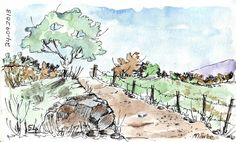Sketching in Nature: A beautiful fence - Maree