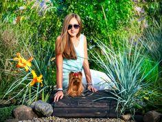 Василек, Лакки Стар Солярис, йорк, йоркширский терьер, собака, питомец, мой сад, красивый сад, сад своими руками