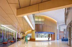 Hershey Children's Hospital – Selbert Perkins Design