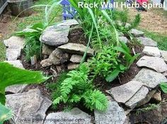 how to build a herb spiral garden, diy, flowers, gardening, homesteading, how to, perennial, Rock wall herb spiral Perfect design for adding a tall thriller at the top fillers in the middle and spillers over the edges and in cracks up the walls