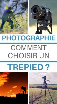 Digital Photography, Photography Tips, Cheetah Photos, Belle Photo, Photo Art, Passion, Guide, Album, How To Plan