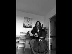 Stentor Cello - YouTube Cello, Student, Music, Youtube, Musica, Musik, Cellos, College Students, Muziek