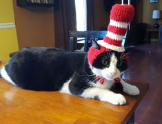 Because I crochet a lot I decided that one of my cats needed to be the Cat in the Hat   http://ift.tt/25mxARu via /r/cats http://ift.tt/1X0Dhn2  cats funny pictures