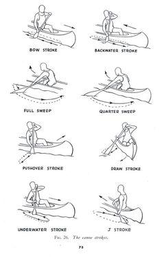 The canoe strokes.