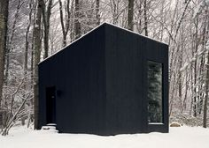 This Secluded Library In The Woods Is Every Book Lover's Dream | Bored Panda