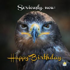 Image result for happy birthday gif eagle