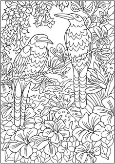 creative designs coloring pages | 428 Best Dover Samples - Butterfly, Bird and Flower ...