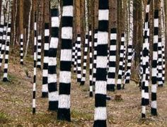 Striped trees. Simple and interesting visual effect.