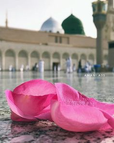 Masjid Haram, Al Masjid An Nabawi, Mecca Masjid, Islamic Images, Islamic Love Quotes, Islamic Pictures, Islam Beliefs, Islam Religion, Ramadan
