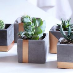 Modern gray and copper cube concrete planter pot with square saucer and copper painted vertical strip Süßer Kupfer Beton Pflanzer von Atelier IDeco Diy Concrete Planters, Concrete Pots, Diy Planters, Planter Ideas, Concrete Crafts, Concrete Projects, Diy Projects, Mini Vasos, Do It Yourself Decoration